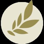 A Book Apart Logo
